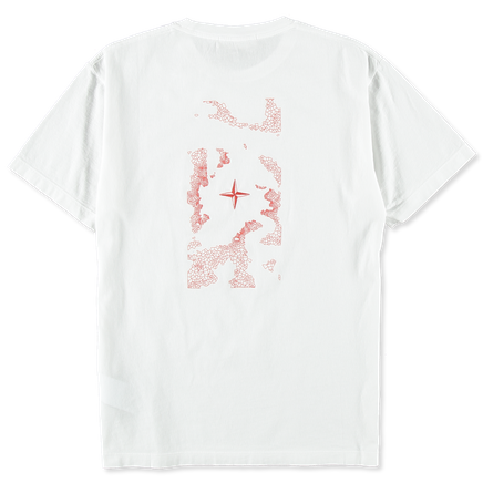 70152NS83 V0001 Printed T-Shirt