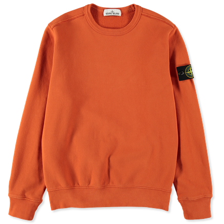 Classic Fleece Sweatshirt - 711562720 - V0032