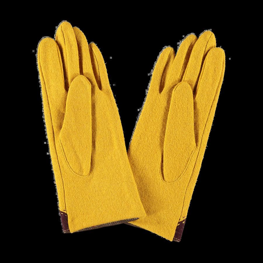 Divers Glove