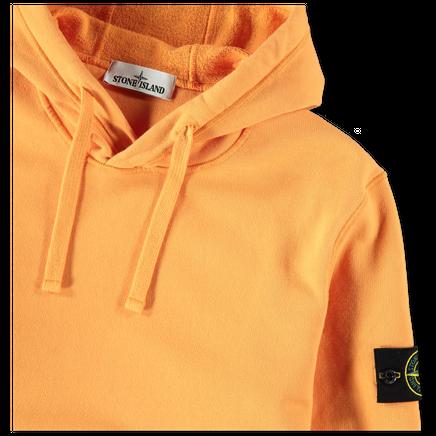 Hooded PO Sweatshirt - 731564120 - V0032
